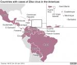 Zika Virus: WHO Declares Global Public Health Emergency