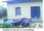 Shocking: Delta Hospital Abandons Corpses In The Open (Photo)