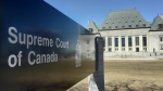 Supreme Court Of Canada Legalizes 'Some' Sexual Acts With Animals In Landmark Case