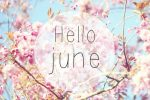 Happy New Month Of June MDBERS