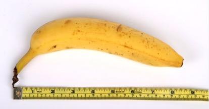 Measuring big dick