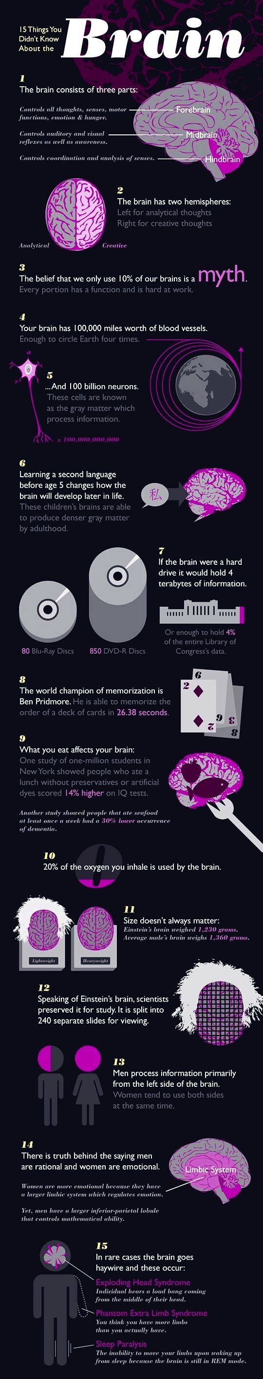 15 Things You Didn't Know About Your Brain