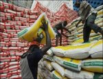 Bag Of Rice May Cost N40,000 By December – Minister For Agriculture
