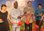 StarTimes Hosts Chinese Cultural Festival