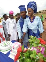 Couple Who Allegedly Got Money For Their Wedding From MMM Honours Scheme With Wedding Cake