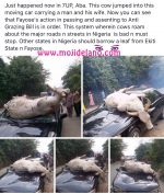 Cow Jumps Infront Of Moving Car, Causing Fatal Accident (Photos)
