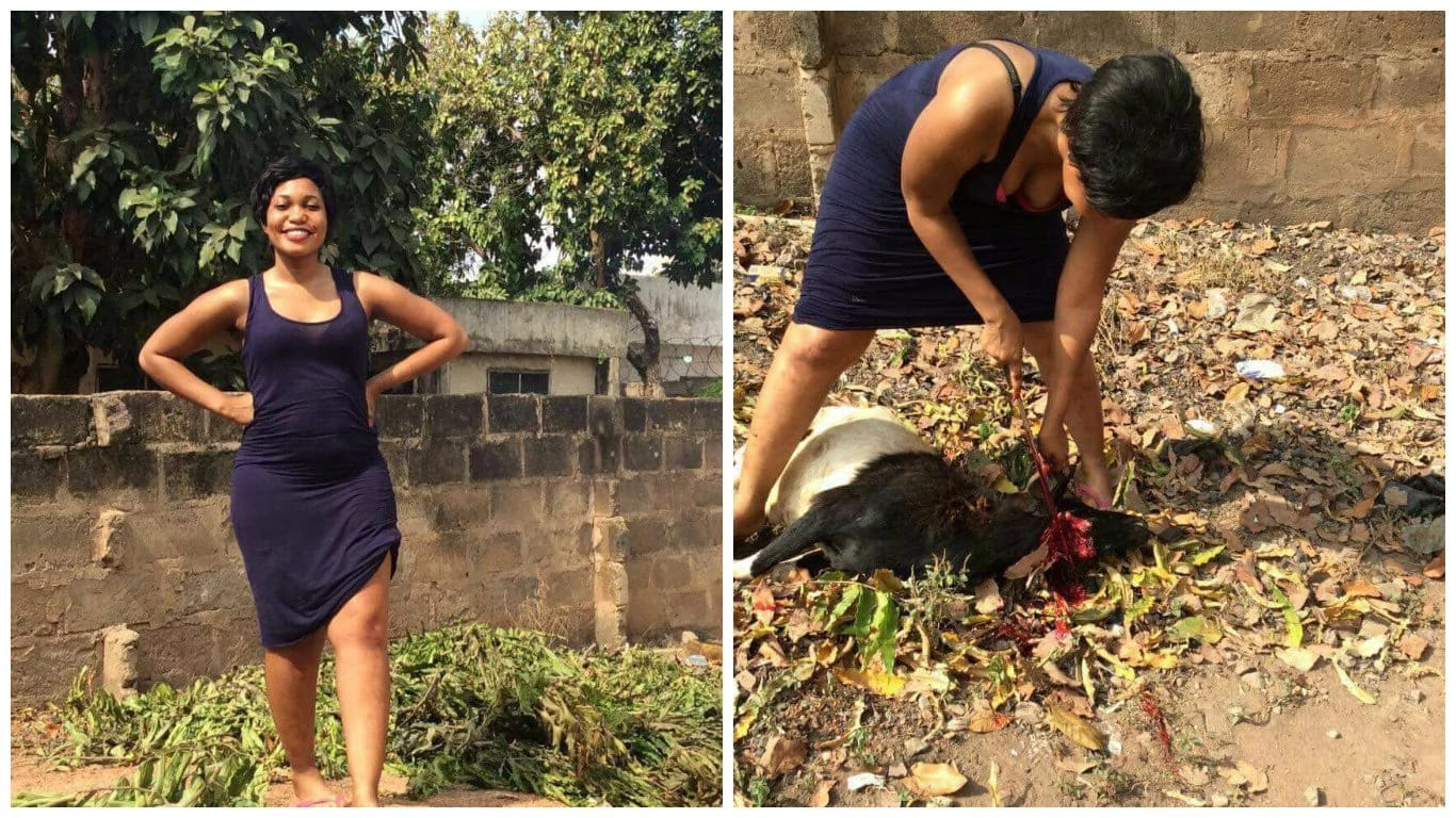 Wife Material Or Not? Nigerian Lady Single-handely Slaughters A Goat [Twitter Reactions]