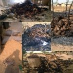 Beyond The Killings, Untold Stories Of Farmer's Barn Invasion In Niger State