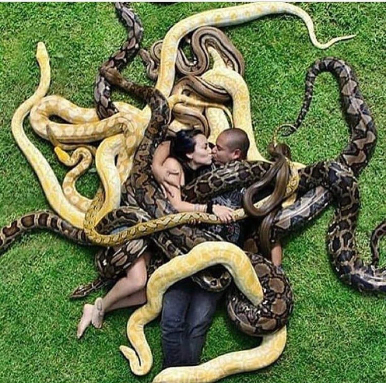 OMG! What Kind Of Bizarre Pre-wedding Photo Is This ???