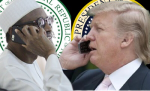 Trump-Buhari Phone call: US To Pump $1b Into Nigeria's Power Sector