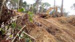 Superhighway Threatens World's Biodiversity Hotspot To Displace 185 Communities With 50,000 Inhabitantsby Mercy Abang