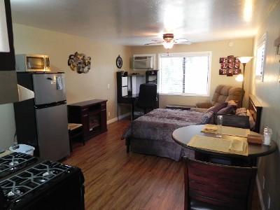 Amazing Interior Design Ideas For Single Room Apartments
