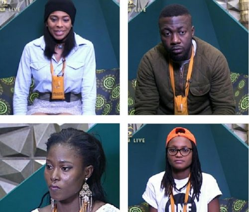 #BBNaija: Check To See Which Housemate Is Leading In The Voting Polls As Eviction Draws Near