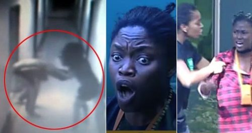 Tension Rises On #BBNaija As Bisola and DebbieRise Fight In Heated Physical Brawl [Watch Clip]