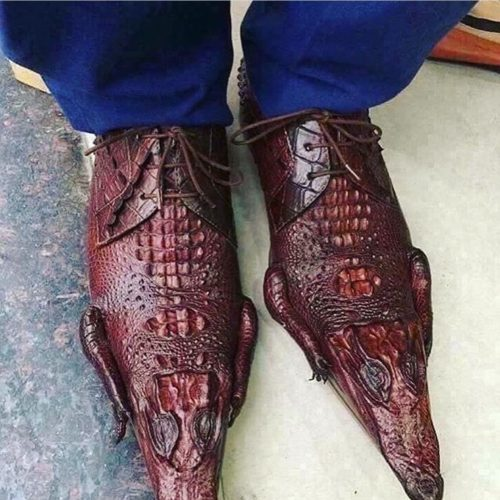 Photo What Kind Of Shoes Are These???
