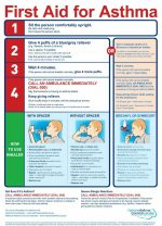 First Aid: What To Do During An Asthma Attack