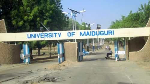 Boko Haram Attacks: 70 Lecturers Resign From University Of Maiduguri